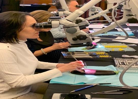 Microscope for Orthodents, מכשור רפואי לאורתופדיה zimmer biomet, molecular layer deposition, usb digital video camera, נעלי בטיחות עם כיפת ברזל, החלפת מפרק ברך
